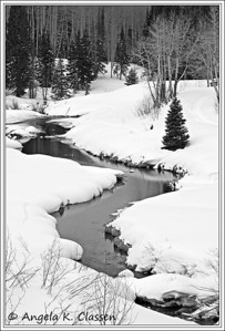 Stream in Mesa Lakes area, Grand Mesa, Colorado