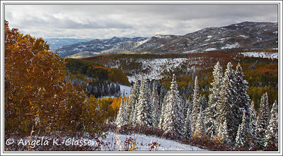 Rainbow Ridge, Buffalo Pass Rd., near Steamboat Springs, Colorado