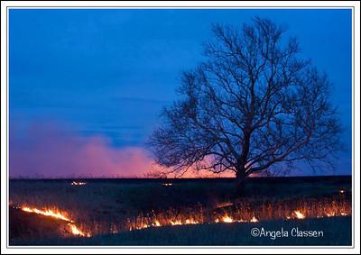 Spring prairie burn, Flint Hills near Topeka, Kansas