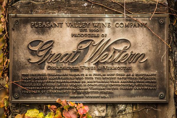 The Pleasant Valley Winery ~ Hammondsport, NY