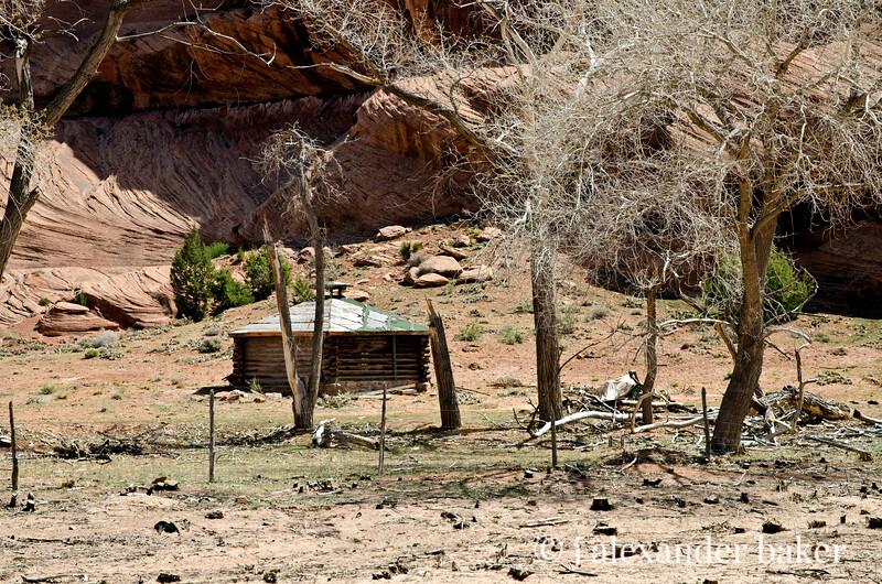 Log Hogan, Canyon De Chelly