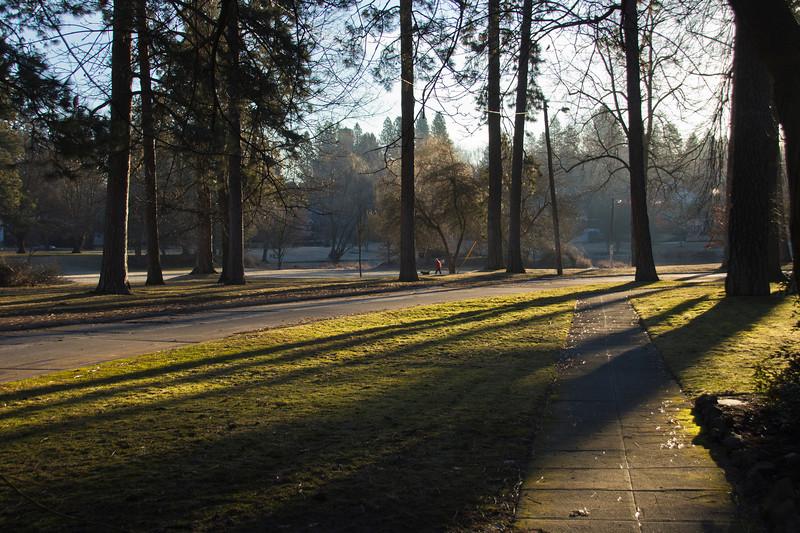 Sunrise, Cannon Hill Park