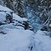 Cougar Jumps the Frozen Falls