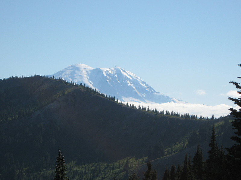 Mt. Rainier from Blowout Mountain