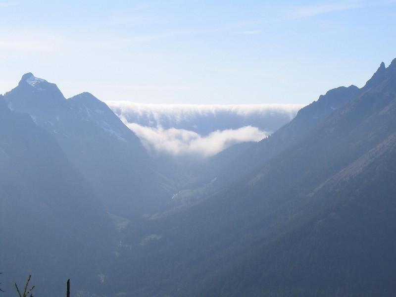 Fog Fall