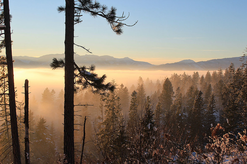 Winter Inversion