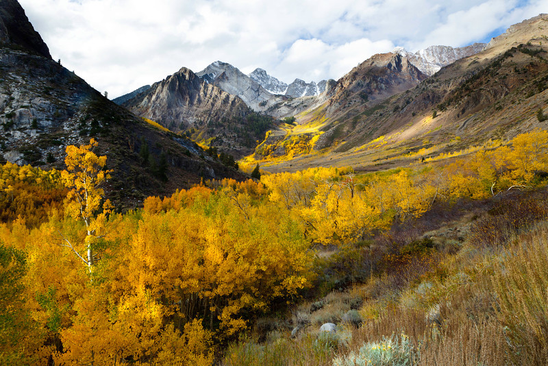 McGee Creek Autumn, Eastern Sierra