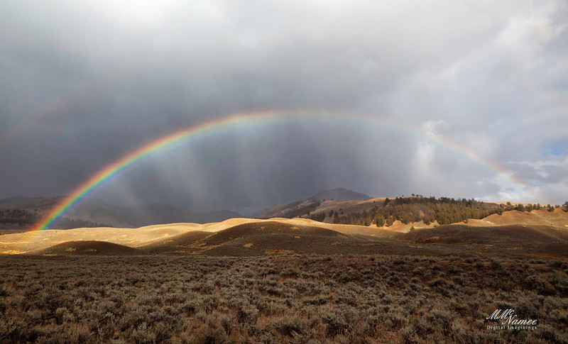 Rainbow of Lamar Valley, Yellowstone National Park