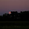 IMGP4438_20100725_Moon