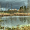 Pond at Crosswater