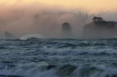Olympic National Park, Pacific Ocean, Washington Coast  003