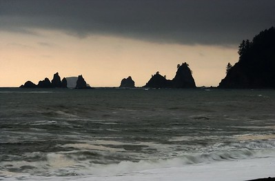 Olympic National Park, Pacific Ocean, Washington Coast  002