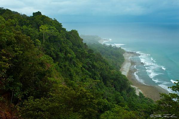 The Green Coast