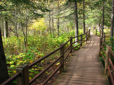 Trail at Gooseberry Falls State Park