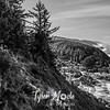 101  G Cape Perpetua Sharp BW