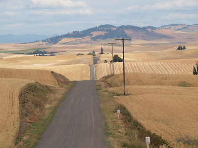 Road with Harvested Fields and Telephone Poles and Hill Copyright 2009 Neil Stahl