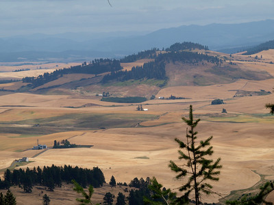 Hill from Kamiak Butte Copyright 2009 Neil Stahl