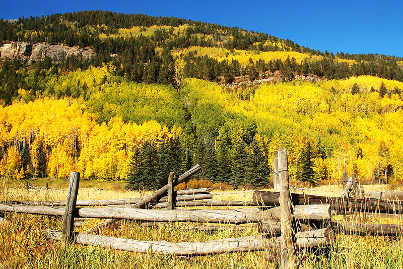 Fence near Durango, Colorado - Steve Sieren