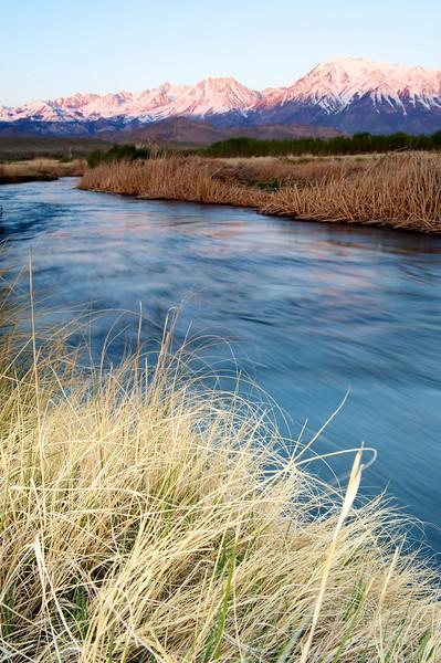 river, reeds, grass, mountains, Sierras