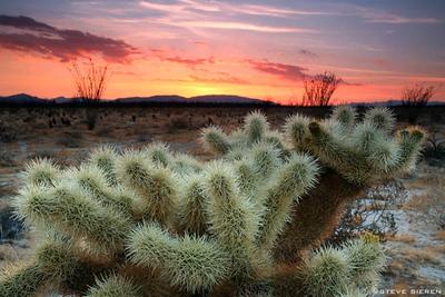 Missing the Sun - Colorado Desert Mexican Border