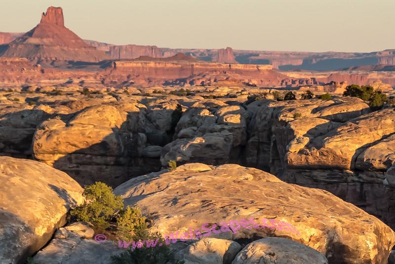 Sunrise at Elephant Hill, Canyonland Needles NP
