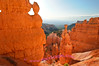 It's unreal how the rocks glow orange in the reflected morning sunlight, Bryce Canyon National Park.