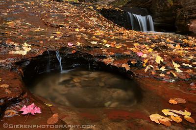 Pot Holes Zion National Park