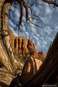 Juniper Framed Sedona, Arizona