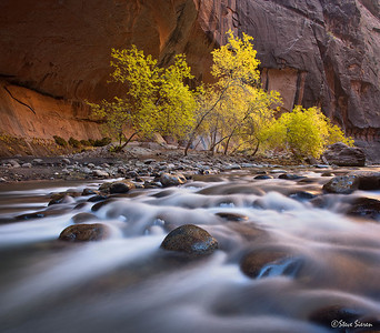 I was walking around these parts in the Narrows while leading a workshop there this past weekend.  There were a couple of deep spots but I had a Lowepro Dryzone bag that came in real handy at one point along the river walk.  That little bag can save the day from the many perrils a landscape photographer run into with water whether it's a shallow stream or just the normal random larger sets of waves that come in at the ocean.  We rented the dry pants on this adventure but the water still creeped in from below and the current blasting against my left leg gave me the shivers for a couple of minutes.  One of the participants put on his jacket and beanie just after trying his own composition along this section of the Narrows.  From looking at the first few comps I feel that if I did not rent the dry pants I wouldn't have been able to spend the time working the composition here.  I used my 24mm tilt shift lens to squeeze in a few more mega pixels into the frame here by stiching 3 shots together without moving the image sensor.  That lens is one of Canon's sharpest lenses and I don't often use it as much as I want to.    The Journal www.SteveSieren.wordpress.com  Learn to see in a different way www.ScenicPhotoWorkshops.com
