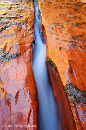 Sandstone Creek - Zion National Park - Steve Sieren