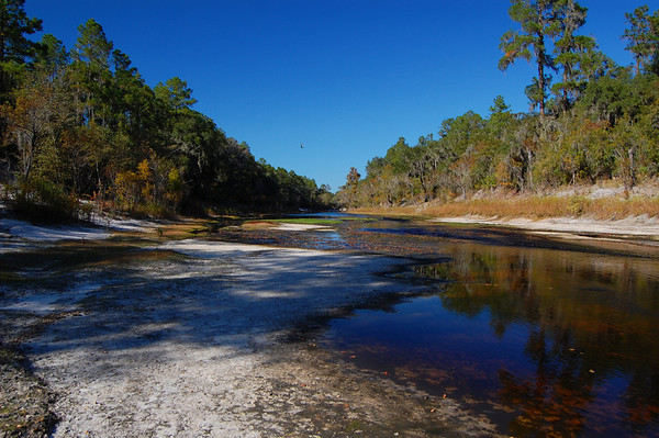 The Suwannee at Bridge Six in November