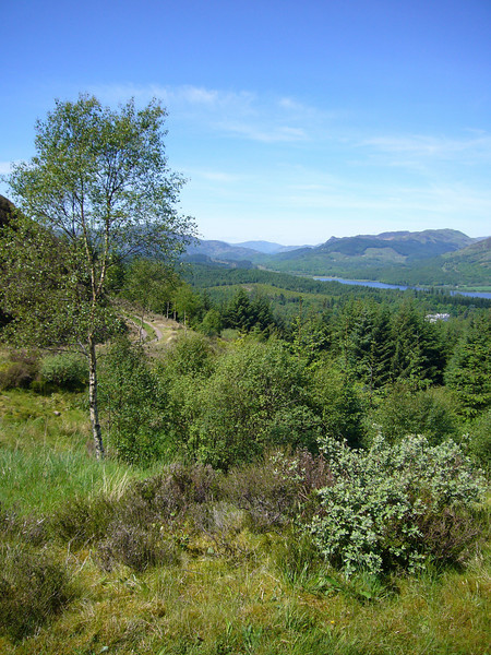 May 2009. Looking over the Trossachs from the Menteith Hills, Stirlingshire, Scotland.