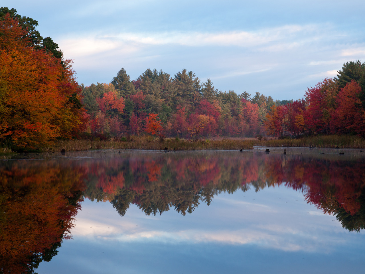Another slice of Adam's pond from this morning.  The colors in the trees at the marshy end are really something!
