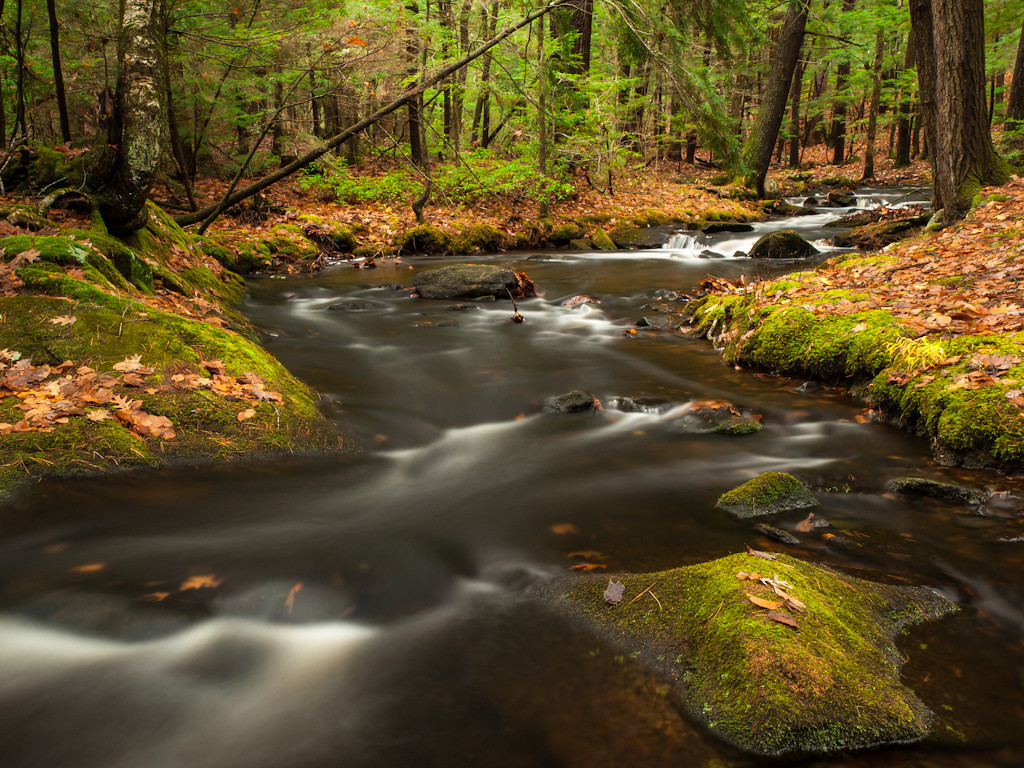 Tranquil or turbulent, Tucker brook always shows its good side.