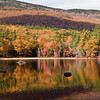 Foliage on the slopes of Mt. Monadnock at Gilson Pond, Dublin NH