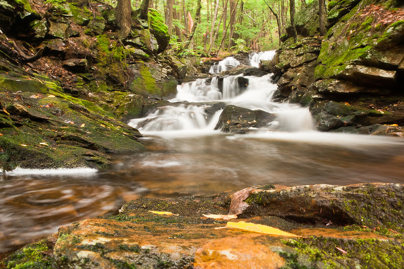 The uppermost segment of the falls at Senter.  Set the camera directly on a rock in the middle of the flow and wedged it with my filter wallet.  I have a frame with the leaves on the foreground rocks removed, but it wasn't as ineresting.  For some reason this image seems soft to me, I think I may have missed my hyperfocal point.