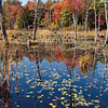A beaver pond at Monson Center - a preserved piece of old New England.