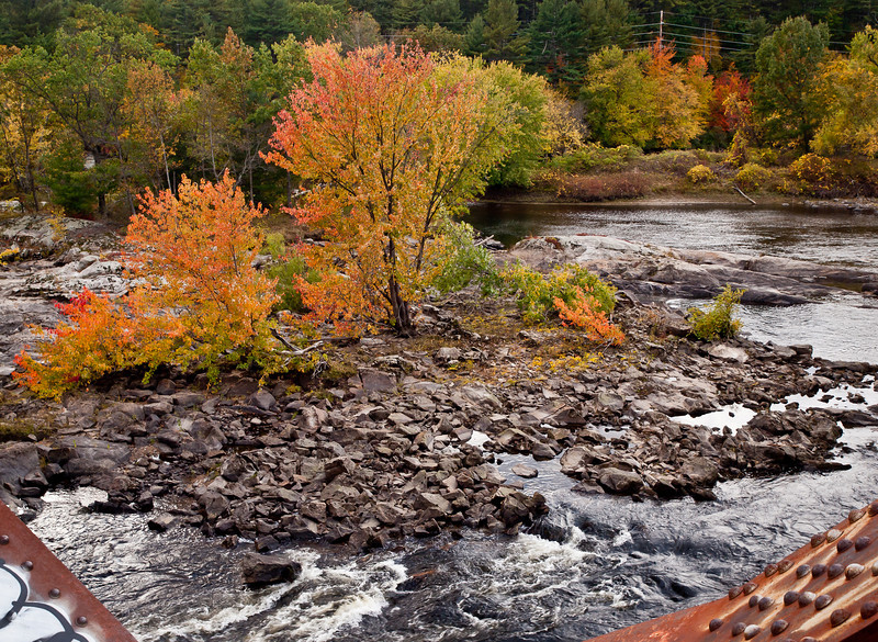 The view from a disused train tressle bridge over the Merrimack in Manchester, NH.  I love how these trees flourish on such a seemingly inhospitable scrap of land in the river.
