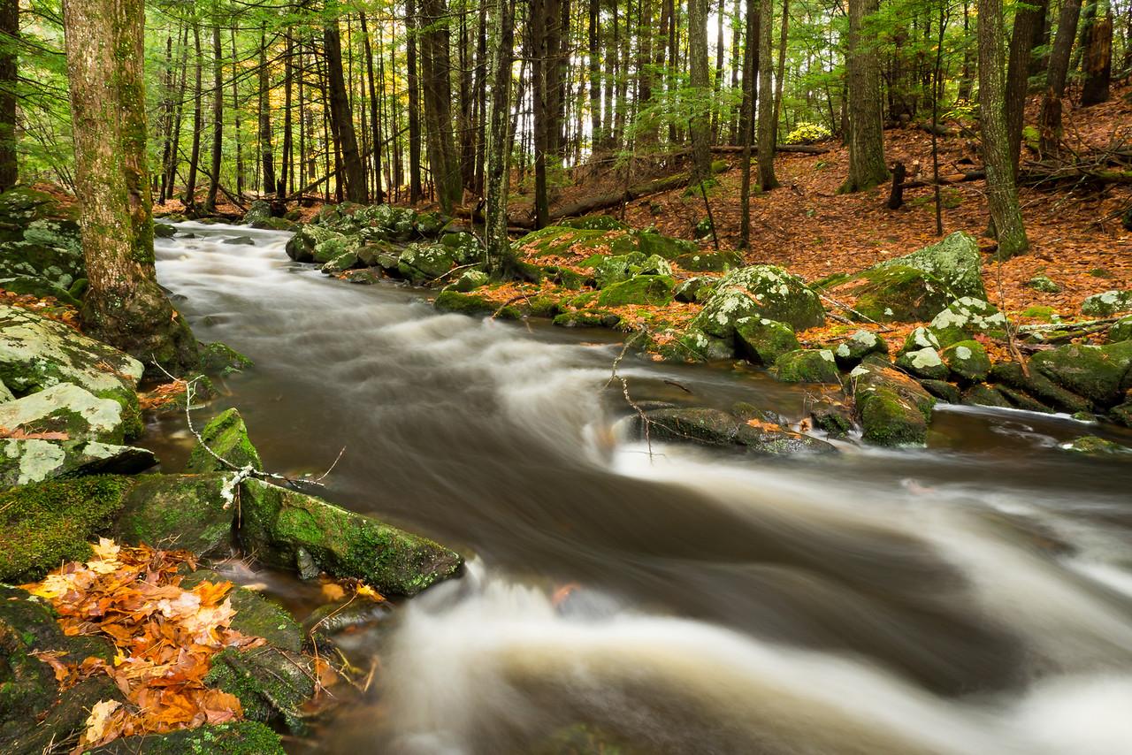 Dudley Brook cascades