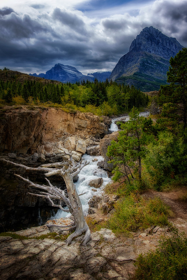 By Swiftcurrent Falls