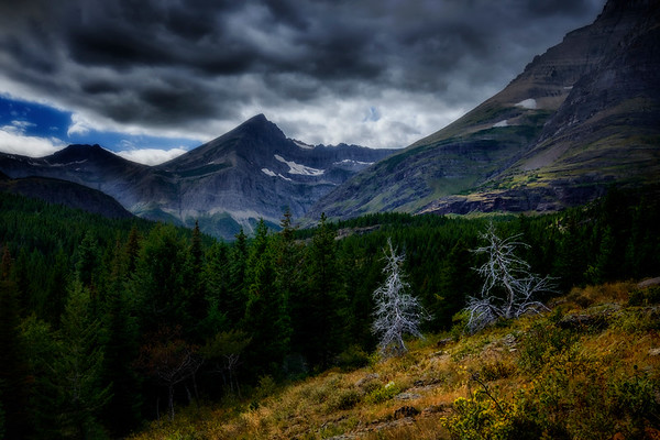 Clearing on the Continental Divide trail