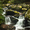 Located off of the Roaring Forks Nature Tail...