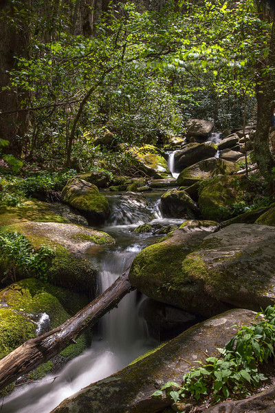 Greenbrier Area of the Smokies