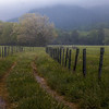Taken just off Sparks Lane..Cades Cove.