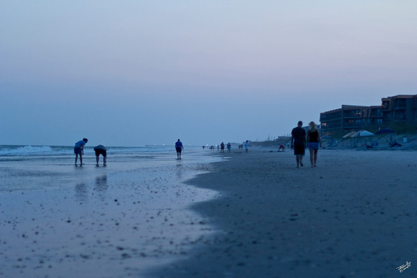 Last Shell Light<br /> Gathering shells by the last rays of summer's hot light