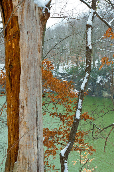 Color Me Winter<br /> <br /> White Park photos on a snowy December day, 2012.