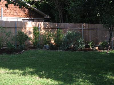 the backyard saga and lots of rain