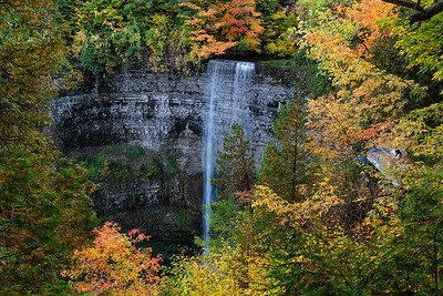 Autumn At Tews Falls