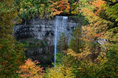 Autumn At Tews Falls