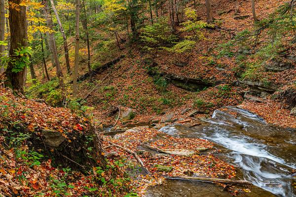 Dundas Hiking Trail